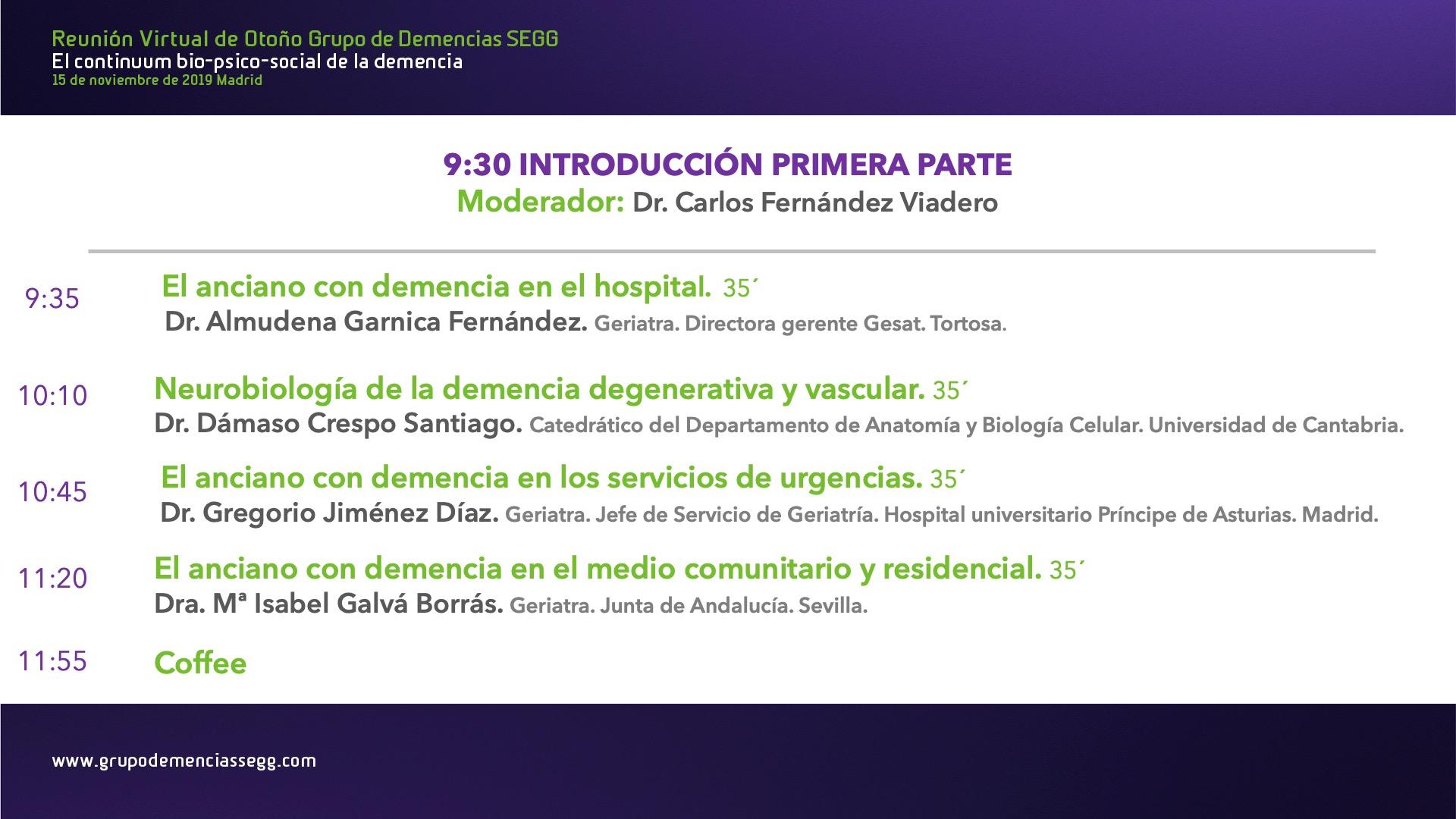 Reunión Presencial Grupo Demencias SEGG (5 años consecutivos)